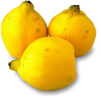 آشنایی بیشتر با خواص میوه