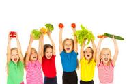 تغذیه مناسب کودکان دبستانی، گروههای مختلف غذایی
