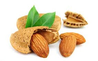خواص بادام برای کودکان، بهبود رژیم غذایی