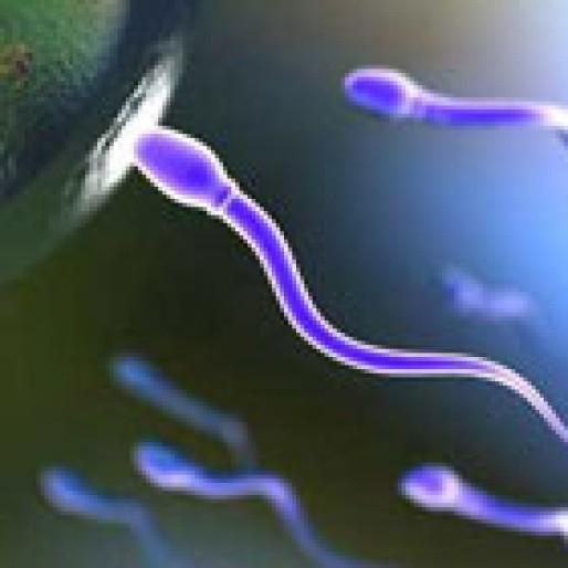افزایش احتمال باروری اسپرم، چند راهکار ساده