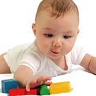 هوش جنین در بارداری، فقط ژنتیک؟