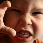 پرشخاشگری کودک، والدین دست بجنبانند