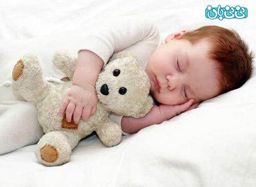 شناخت حیوانات با عروسک