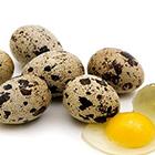 خواص تخم بلدرچین، مقوی برای باردار؟