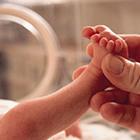 نوزادان نارس، کم هوش ترند؟