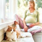 توکسوپلاسما در بارداری، علائم و نشانه ها