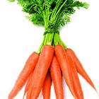 تغذیه کودکان، هویج برای بچه ها لازمه؟