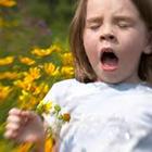 آلرژی کودکان (2)