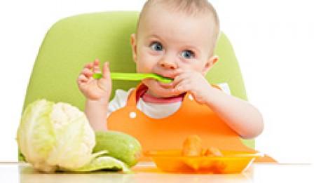 تغذیه بچه دو ساله، غذای کمکی/ کلیپ