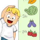 رشد جسمی کودک، معجزه کدام سین هفت سین؟