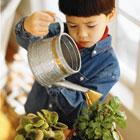 دلایل مسمومیت کودک، تاثیر گیاهان آپارتمانی