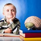 ضریب هوشی کودکان، تاثیر گرد و خاک
