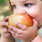 چاقی در کودکان، نکاتی درباره رژیم درمانی