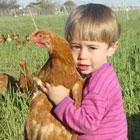 آشنایی کودک با طبیعت، مقابله با حیوان آزاری