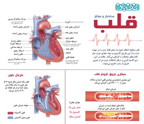 علت تپش قلب در بارداری چیست؟
