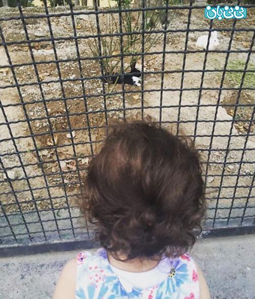 آزاده نامداری و دخترش، گندم در قفس خرگوش ها