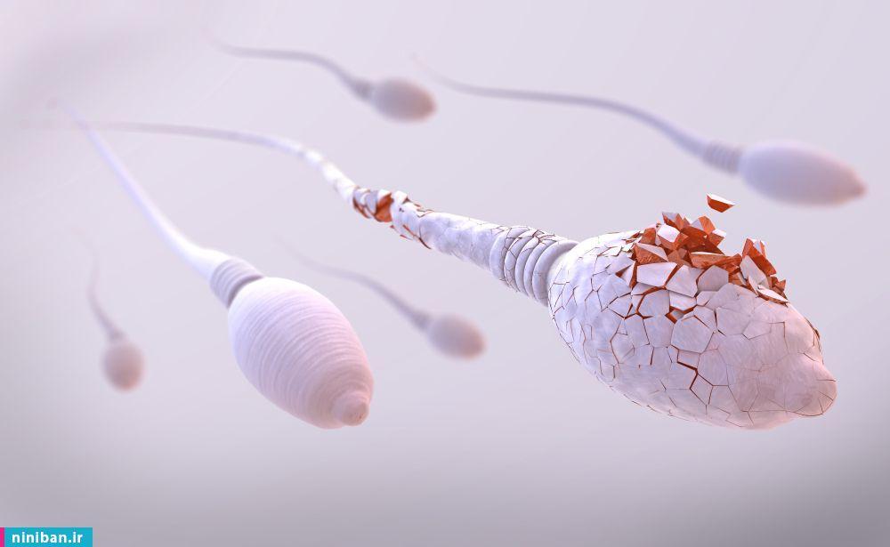 انجام آزمایش اسپرم