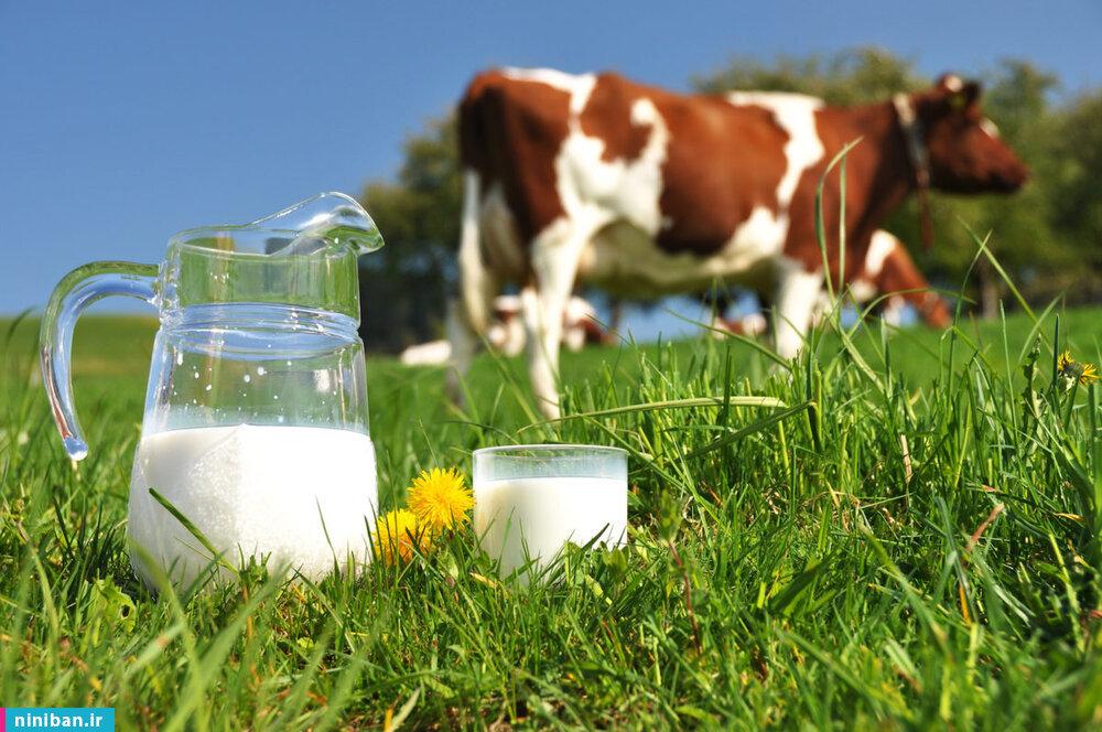 انواع شیر گیاهی چه فوایدی دارد؟